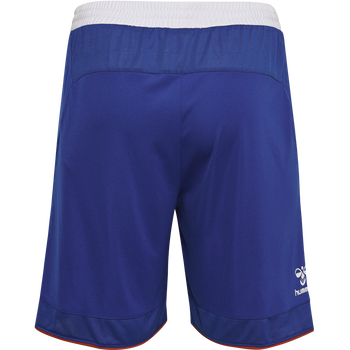 DBU GK SHORTS 18/19, TRUE BLUE, packshot